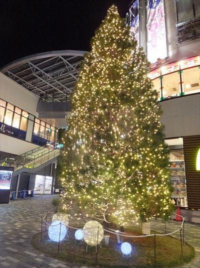 東京都内ショッピングモールクリスマスツリー